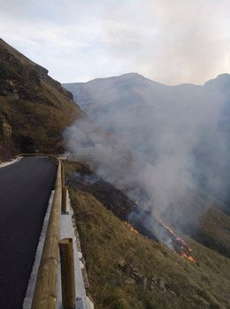 Incendio forestal en Vega de Pas