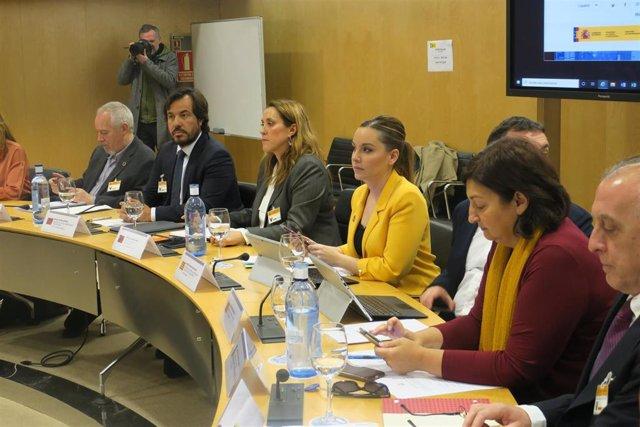 La consejera de Ciencia, Universidad y Sociedad del Conocimiento del Gobierno de Aragón, Maru Díaz en el Consejo de Política Científica, Tecnológica y de Innovación