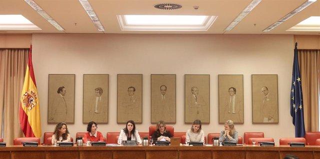 La ministra de Igualdad, Irene Montero (centro), durante la reunión de Comisión de Igualdad en el Congreso de los Diputados en Madrid, a 24 de febrero de 2020.