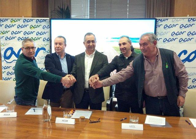 ACOR y las organizaciones agrarias de Castilla y León firman un acuerdo en defensa del sector remolachero y azucarero.