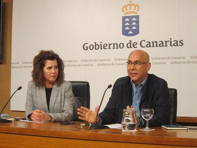 La consejera de Sanidad del Gobierno de Canarias, Teresa Cruz y el jefe del Servicio de Epidemiología del SUC, Domingo Núñez, en una rueda de prensa para analizar los positivos por coronavirus en Tenerife