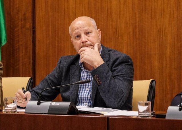 El consejero de Educación, Javier Imbroda, este miércoles durante su comparecencia en comisión.