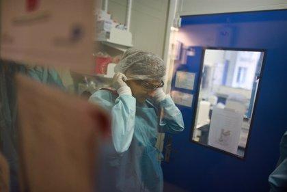 Coronavirus.- Pakistán confirma los dos primeros casos de nuevo coronavirus en el país