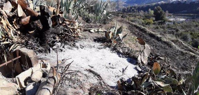 Restos de un incendio forestal en un paraje de Murchas
