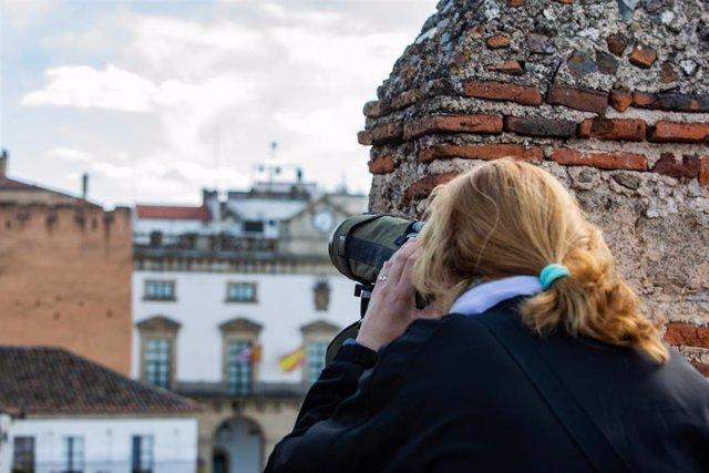 Observación de aves en Cáceres