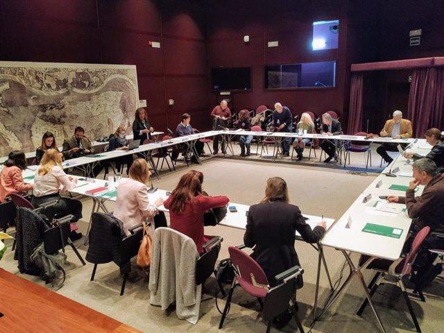 Pleno del Consejo Andaluz de Comercio