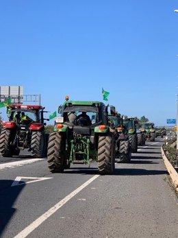 Imagen de algunos de los tractores que se movilizan este jueves cortando la A-49 dirección Portugal