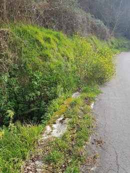Estado de la carretera AS-242, a su paso por la Rebollada (Mieres).
