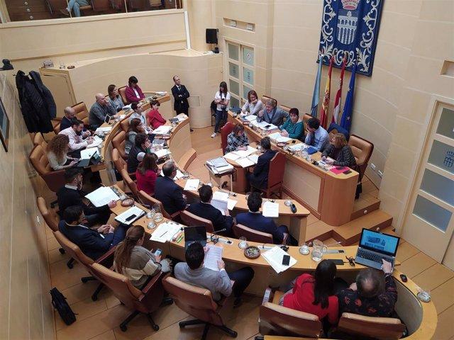 Momento del Pleno celebrado este viernes.