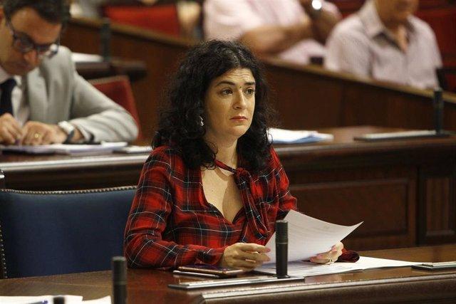 La consellera de Administraciones Públicas y Modernización, Isabel Castro, en el Parlament.