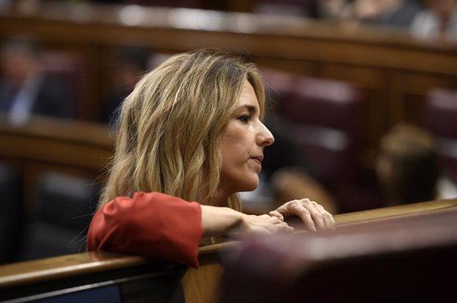 La portaveu del Grup Popular al Congrés, Cayetana Álvarez de Toledo, al  Congrés dels Diputats.