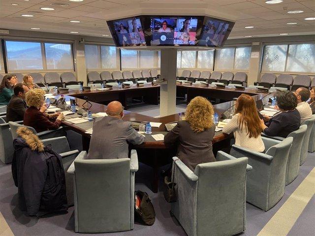 Reunión del grupo de expertos en coronavirus del Consejo General de Enfermería (CGE)