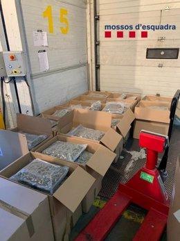Detingut un camioner que transportava 265 quilos de marihuana