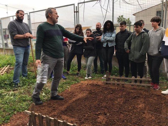 Sevilla.- Un proyecto convierte un huerto escolar en un laboratorio para medir l