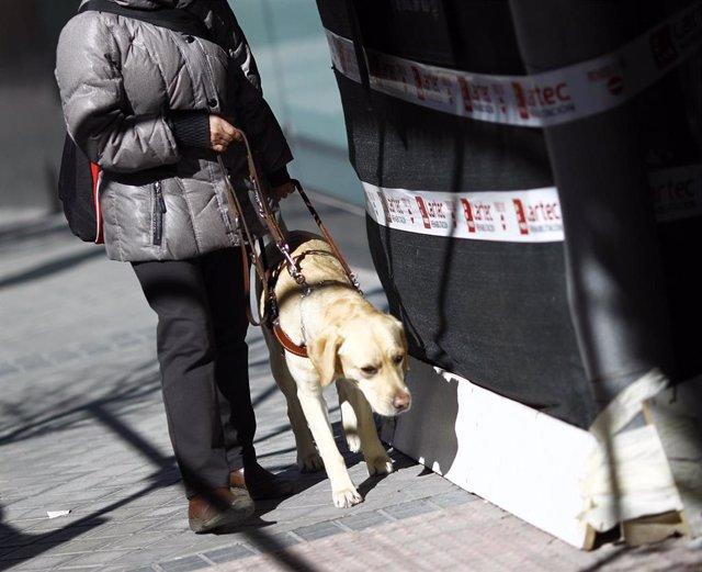 Personas ciega con perro guía