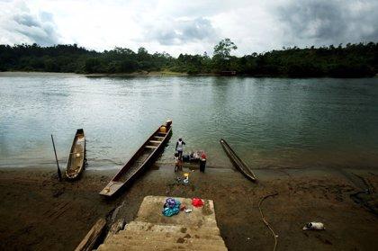 Desplazados y confinados por la violencia en Nariño, olvidados por el Estado colombiano