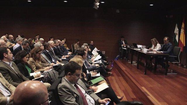 Imagen de la reunión de la secretaria general de Universidades, Investigación y Tecnología de la Junta, Rosa María Ríos, con más de 120 representantes de entidades interesadas en Compra Pública Innovadora (CPI).