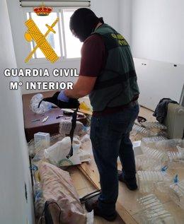 Un agente de la Guardia Civil interviene plantas de marihuana en una vivienda de Roquetas de Mar (Almería)