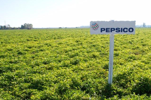 EEUU.- PepsiCo compra Rockstar Energy por 3.400 millones