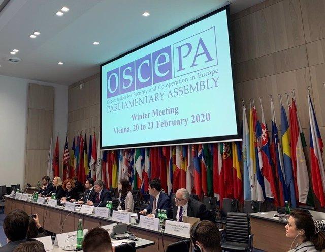 Coronavirus.- La OSCE emplaza a las autoridades a luchar contra la difusión de r