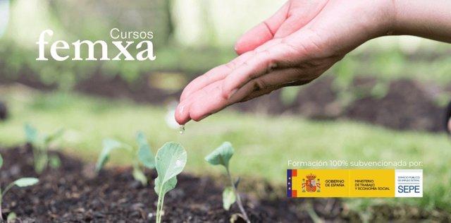 COMUNICADO: El SEPE impulsa el sector agrario y medioambiental con cursos online