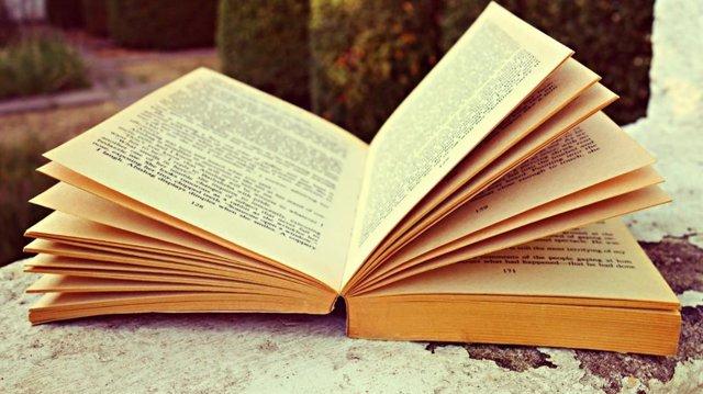 Llibre, recurs.
