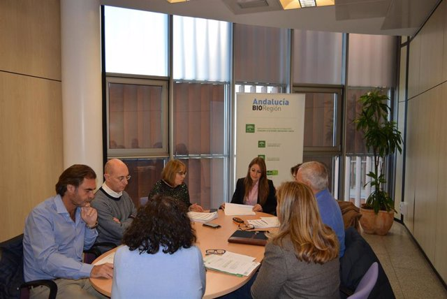 La delegada de Empleo, Formación y Trabajo Autónomo de la Junta en Granada, Virginia Fernández, en la Comisión Provincial IDEA, en una foto de archivo