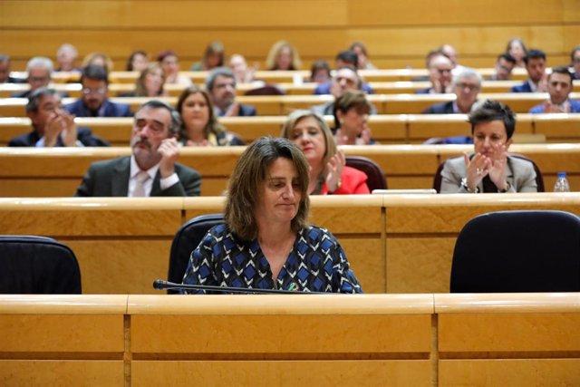 La vicepresidenta cuarta del Gobierno, Teresa Ribera, durante la primera sesión de control al Gobierno de coalición PSOE y Unidas Podemos de la XIV Legislatura en el Senado, en Madrid (España), a 11 de febrero de 2020.