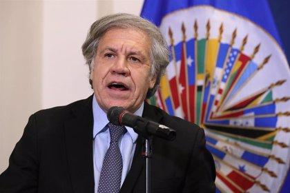 América.- La OEA elige este viernes nuevo secretario general en un escenario regional especialmente convulso