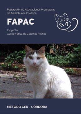 Cartel promocional del proyecto de gestión ética de colonias felinas de Fapac.