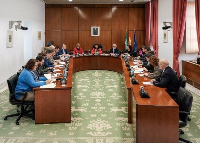 La Diputación Permanente reunida en el Parlamento andaluz, en una imagen de archivo.