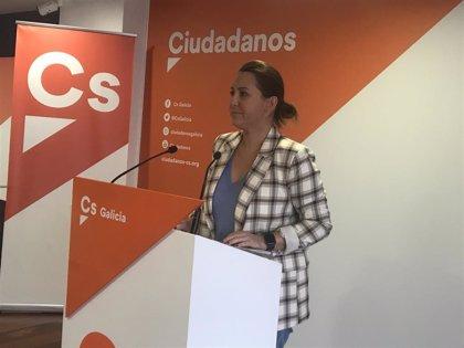 """Pino (Cs) valora la """"transparencia"""" de Feijóo en la crisis sanitaria y pide """"material sanitario y más test"""""""