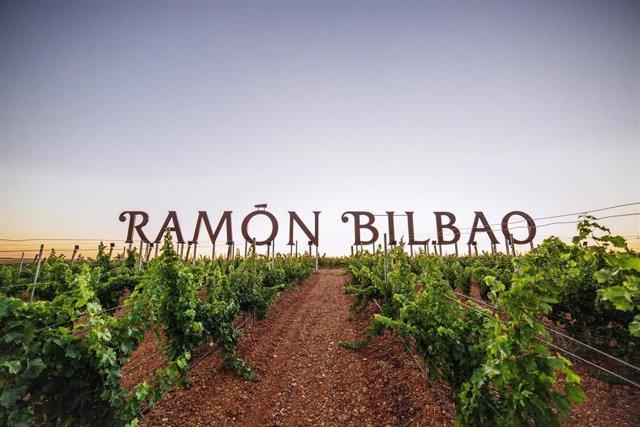 Viñedos de Bodegas Ramón Bilbao