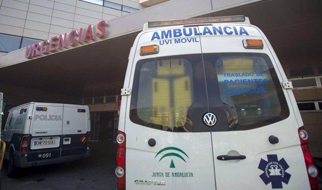 Sustitución.- Coronavirus.- Un total de 48 hoteles de Andalucía podrán alojar a personal de servicios esenciales