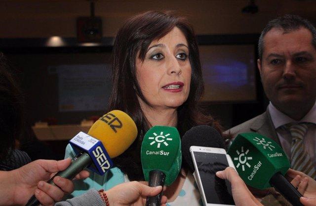 La delegada de Gobierno Interior de la Diputación de Córdoba, Felisa Cañete, en una foto de archivo