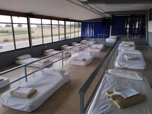 El Consell de Mallorca habilita el Hipódromo Son Pardo para acoger personas sin techo.