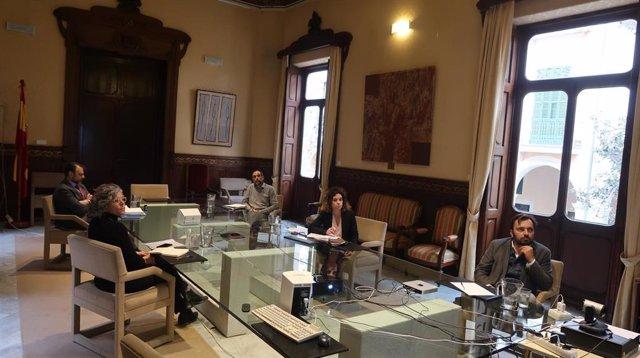 La consellera de Hacienda y Relaciones Exteriores, Rosario Sánchez, durante la reunión de esta tarde.