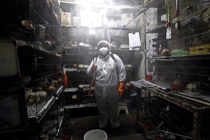 China vuelve a no registrar ninguna transmisión local de coronavirus pero confirma 67 casos importados