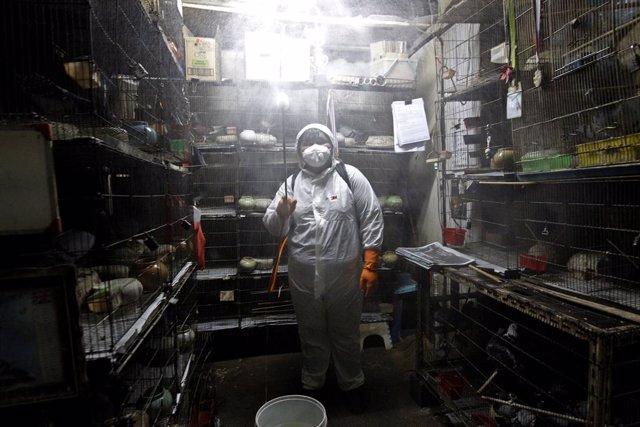 Coronavirus.- China vuelve a no registrar ninguna transmisión local de coronavir