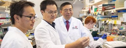 Encuentran un objetivo potencial para la esclerosis tuberosa