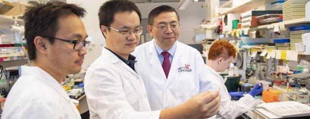 Chenran Wang, profesor asistente en el Departamento de Biología del Cáncer de la UC, y Jun-Lin Guan, Francis Brunning, Presidente de la Fundación y profesor de biología del cáncer en la UC.