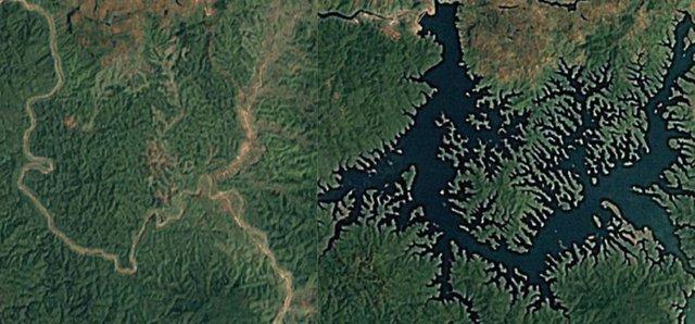 Miles de complejos de energía renovable amenazan áreas biodiversas
