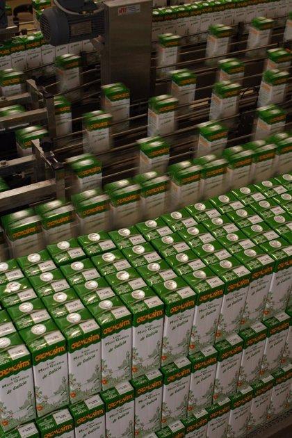 El sector del cartón mantiene la actividad en sus 89 fábricas para garantizar el abastecimiento de envases