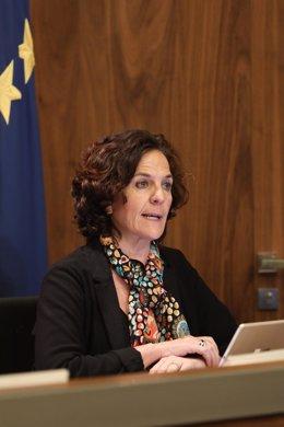 La consejera de Desarrollo Rural y Medio Ambiente, Itziar Gómez