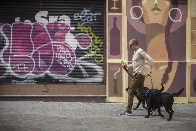 Un hombre pasea a sus perros.