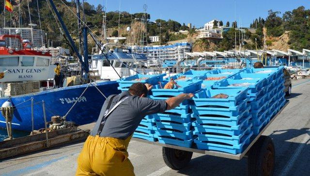Confraria de Pescadors de Blanes