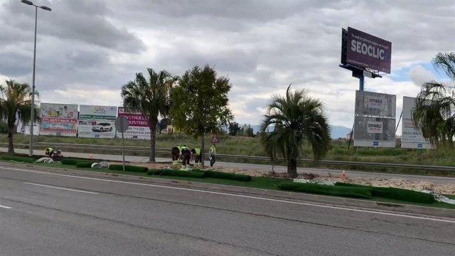Trabajadores operando en rotondas, medianas y parques y jardines del municipio de Murcia