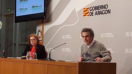 Salud Pública considera que en la ciudad de Zaragoza se da ya una difusión comunitaria del COVID-19
