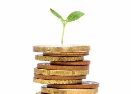 El País Vasco emite el tercer bono sostenible por 500 millones, con una demanda siete veces superior