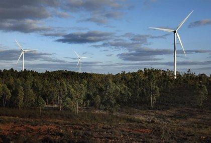 Iberdrola avanza en tres proyectos renovables en España de 211 MW, a pesar de la amenaza del coronavirus